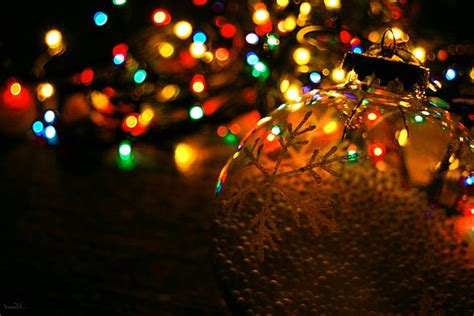 How To Decorate Home In Christmas christmas lights the ultimate way to decorate your home
