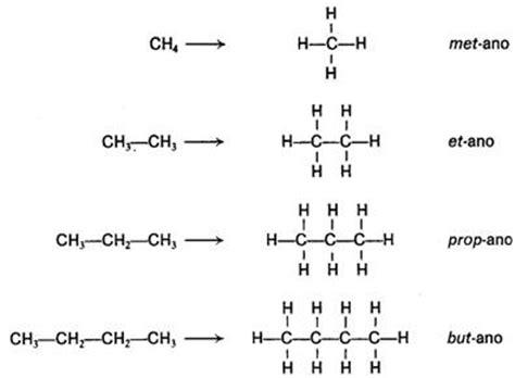 cadenas carbonadas no ramificadas opiniones de compuestos saturados e insaturados
