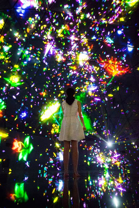 designboom teamlab teamlab stages its largest immersive digital art
