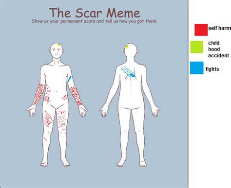 Scar Meme - scar meme by zeroinkfan4evaon on deviantart