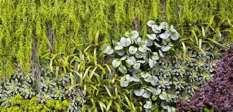 giardino artificiale giardini verticali artificiali piante e fiori artificiali