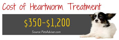 heartworm treatment 10 and not so facts about heartworm in dogs