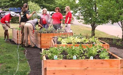 Community Vegetable Gardens Garden For The Community Now Open At Community Center