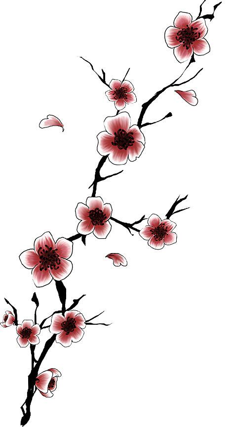 cherry tree designs 17 best ideas about cherry tree tattoos on cherry blossom meaning and
