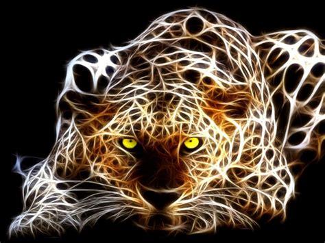 imagenes en 3d haciendo bizcos tigre 3d 1024x768 fondos de pantalla y wallpapers
