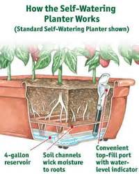 how do self watering planters work urban gardening with vegetables urban gardens