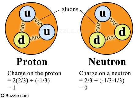 protons facts finding answers to what makes up an atom your search ends