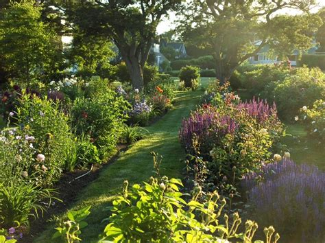 perennial garden in late afternoon contemporary