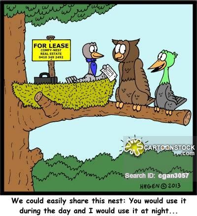 real estate house share house shares cartoons and comics funny pictures from cartoonstock