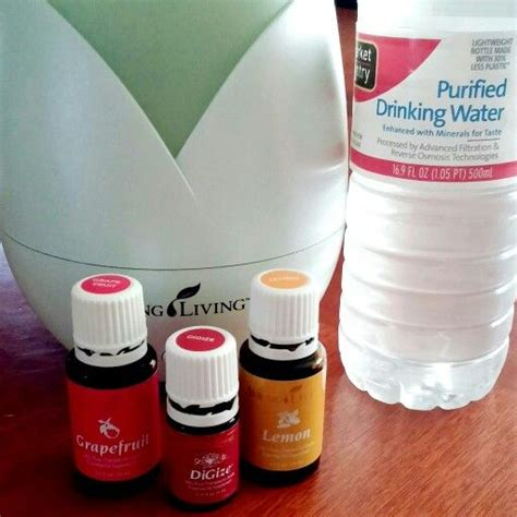 Digize Detox by 25 Best Ideas About Hangover Help On Hangover