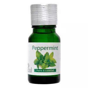Minyak Peppermint 5 petua dan cara halau tikus yang berkesan eratuku