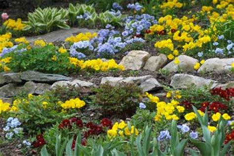 rock garden how to about rock gardens howstuffworks