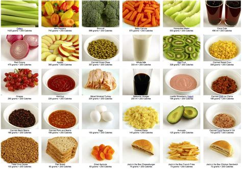what does a look like what does 200 calories look like the weight loss counter revolution