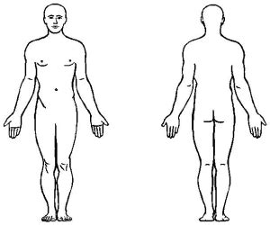 imagenes no realistas del cuerpo humano dibujos del cuerpo humano para colorear en forma
