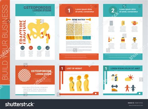 infographic book layout osteoporosis a4 book cover and presentation template with