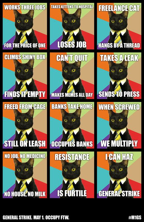 may day meme justseeds may day cat meme