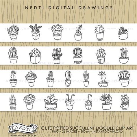 doodle cheats plants digital clipart succulent plant cactus doodle handdrawn