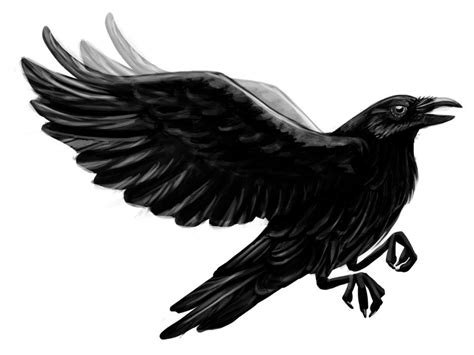 raven tattoo design black flying by ot co tattooimages biz