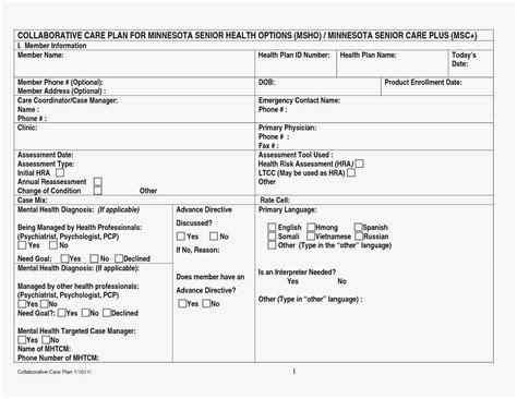 Elegant Chronic Disease Management Care Plan Template Kinoweb Org Care Coordination Plan Template