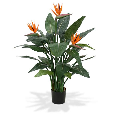 Indoor Flower Plants by Strelitzia Deluxe Artificiel De 115 Cm Plantes