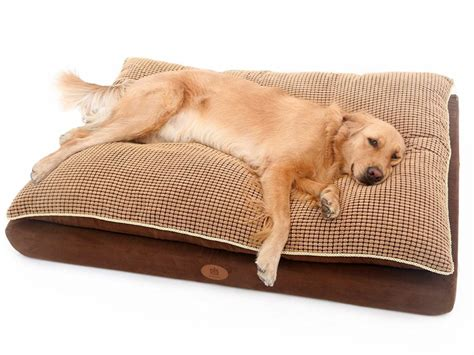 pet beds for large dogs the 30 best large dog beds for your large breed dogs