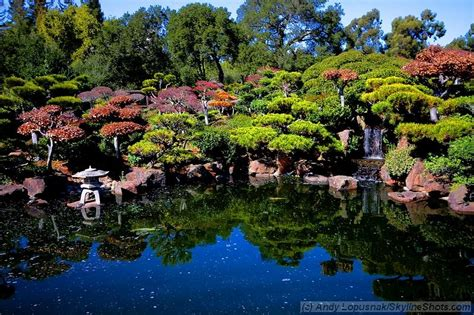 hayward japanese garden photo andy lopušnak photography