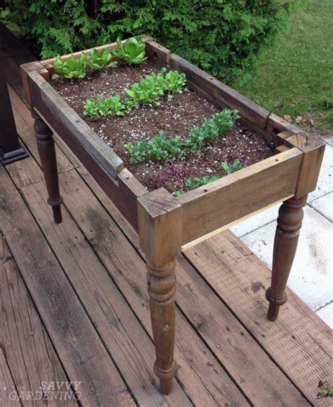 table top herb garden loving my lettuce table
