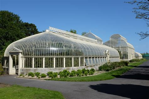 Botanic Gardens Dublin In Glasshouses Meanwhile