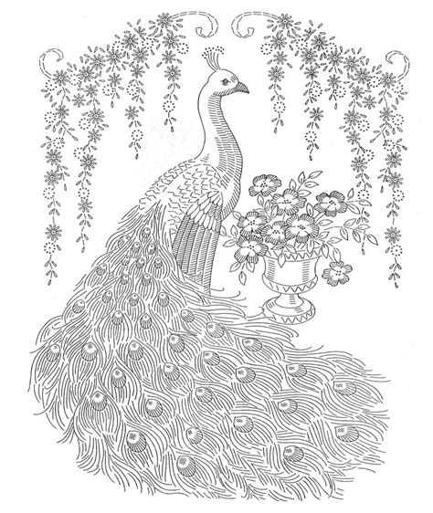 animal coloring pages peacock 1311 best images about coloring pages animals on