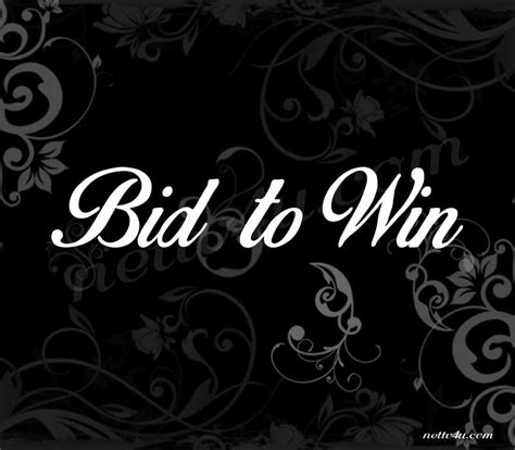 bid to win tv shows bid to win nettv4u