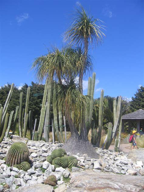 Auckland Botanic Gardens Auckland Botanic Gardens