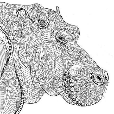 zentangle dieren images  pinterest coloring