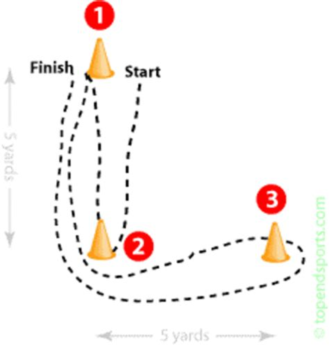 L Assay by Running From Cone To Cone