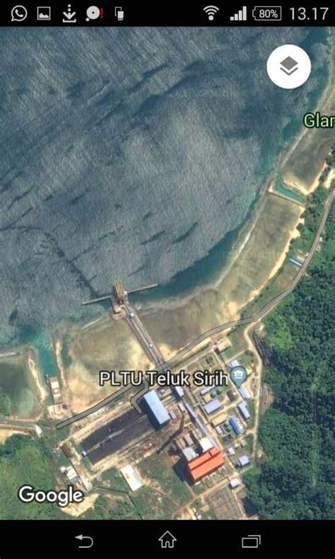 Puntius Tertra Zone Ikan Sumatera belasan penyu terjebak dalam bak penung pltu teluk