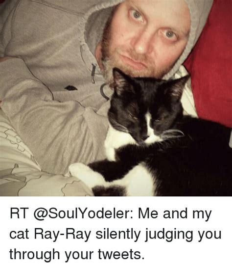 me and my cat rt me and my cat ray ray silently judging you through your tweets meme on sizzle