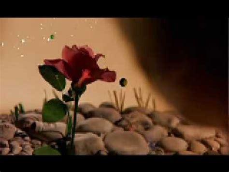 la rossa el principito la rosa