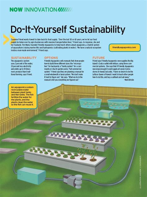 backyard aquaponics plans 17 best ideas about aquaponics diy on aquaponics diy hydroponics and hydroponics