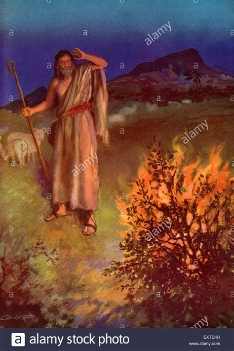 The Burning Bush moses and burning bush stock photos moses and burning