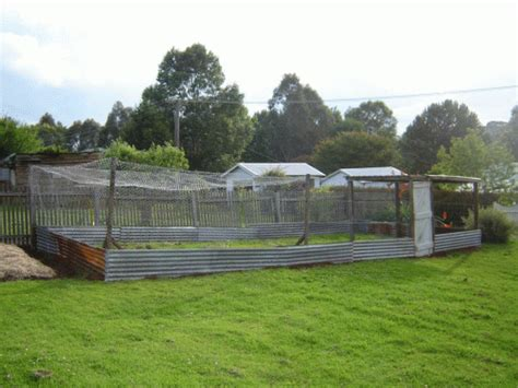 How To Build A Chook Shed by Chook Pen Our Family Projects