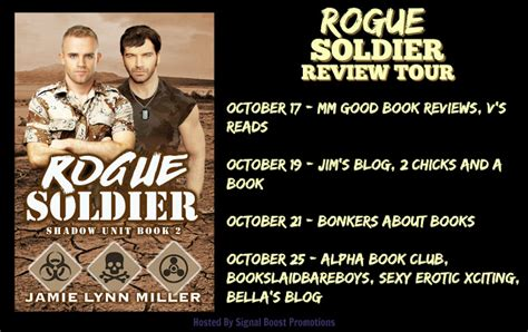 Review Rogue By Lyn Miller review tour miller rogue soldier signal boost promotions