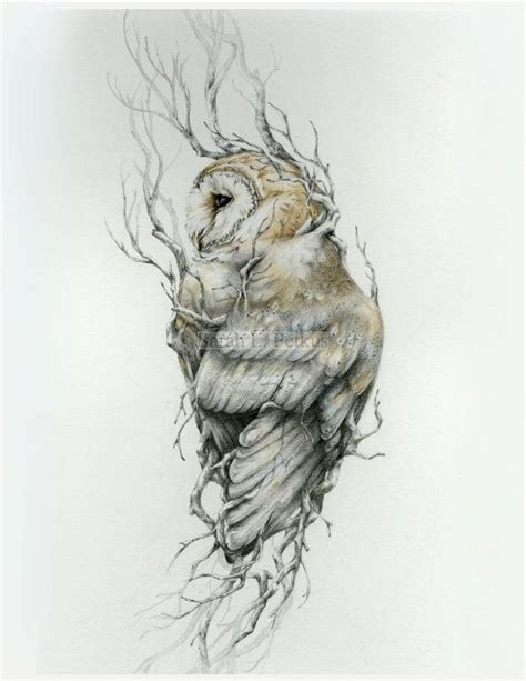 barn owl tattoo designs 367 best owl sketches images on pinterest tattoo ideas