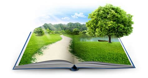 of nature a novel books para un medio ambiente de calidad