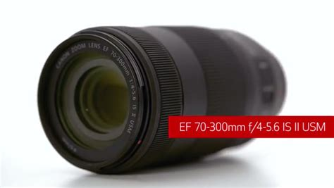 Ef And Ef Industries Ls by Canon Ef 70 300mm F 4 5 6 Is Ii Usm Lens Nano Usm