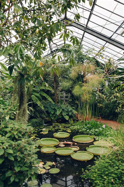 botanical gardens dundee the of dundee botanic garden haarkon