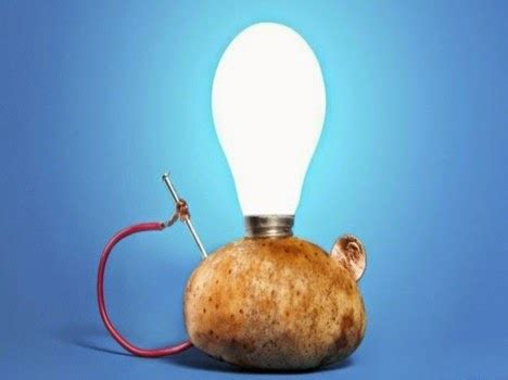 potato powered light bulb led bulb with a potato can light for 40 days opinions and