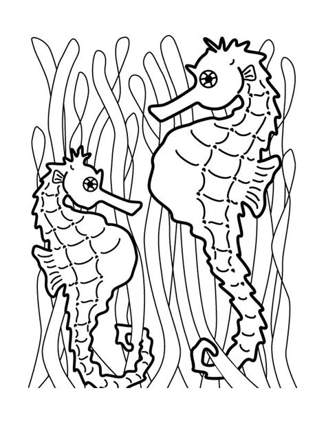 coloring pages of seahorses free printable seahorse coloring pages for