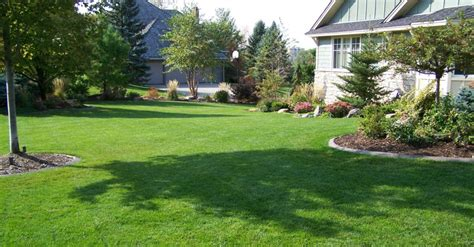 summer lawn care tips keep your lawn look great with these summer lawn care tips