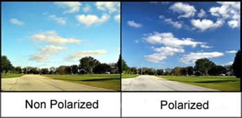 difference between polarized and non polarized sunglasses