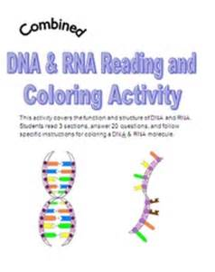 dna coloring transcription and translation 10 best images about dna rna on cut and