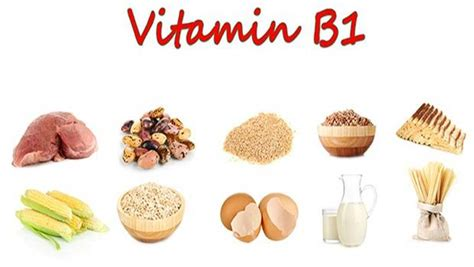 fruits b complex list of foods high in vitamin b complex you should